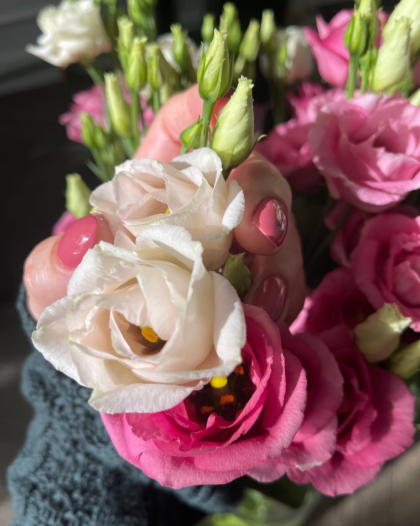 Kwiaty w domu. Mam zawsze. Uwielbiam się nimi otaczać. Patrzeć na ich doskonałość i przemijalność…